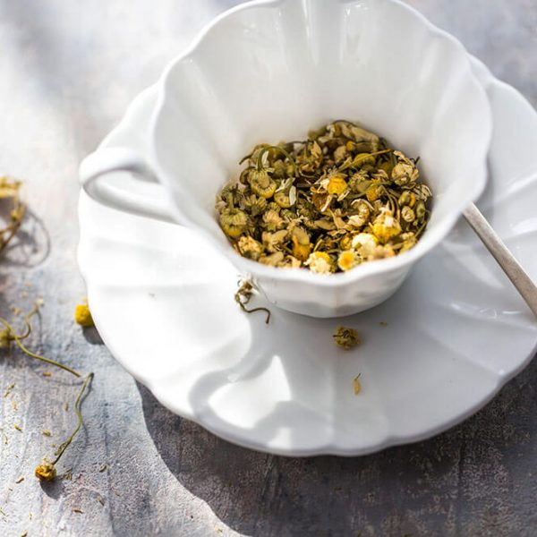 Chamomile-Flowers-in-a-vintage-tea-cup-and-saucer