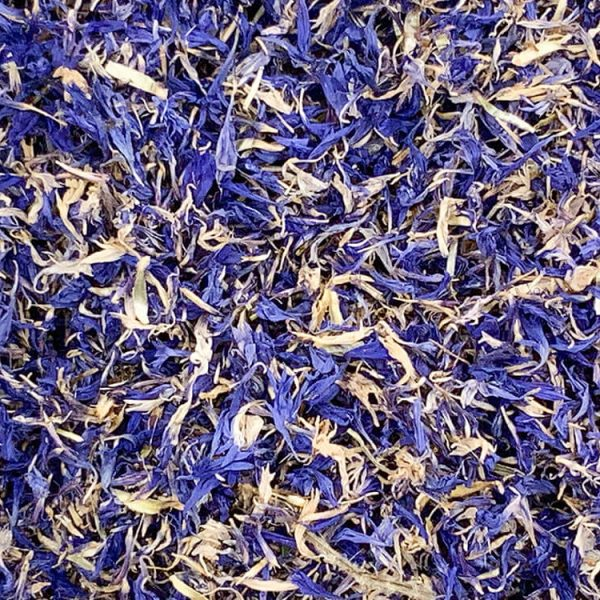 Cornflower-petals-close-up
